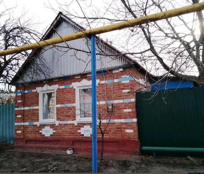 Продажа дома, Замостье, Грайворонский район