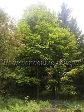 Минское ш. 33 км от МКАД, Сивково, Участок 12 сот.