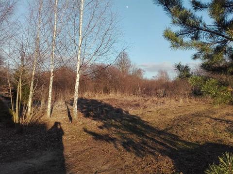 Земельный участок 20 сот в эко-районе.