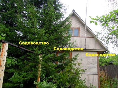 Дача вокруг леса с прудом для купания р-н Красная Пресня
