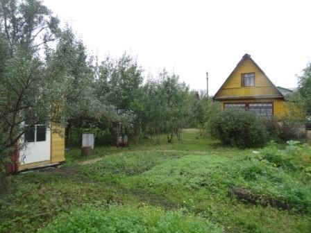 В обжитом, зеленом садоводстве массив Кобрино уютная дача на 6 сотках