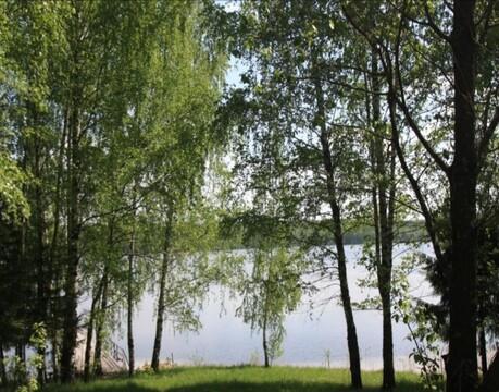 Участок на Вузузском водохранилище