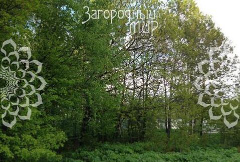 Киевское ш, 30 км от МКАД, Свитино.