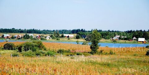 Недвижимость на 1-ой линии оз.Селигер в окружении сосновых боров.
