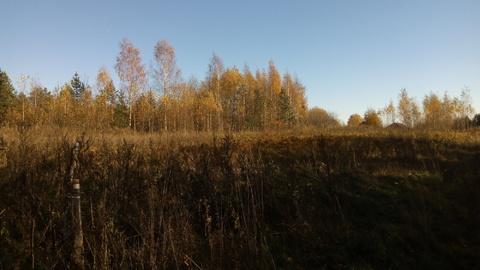 Продажа земельного участка в деревне Станки, Валдайского района