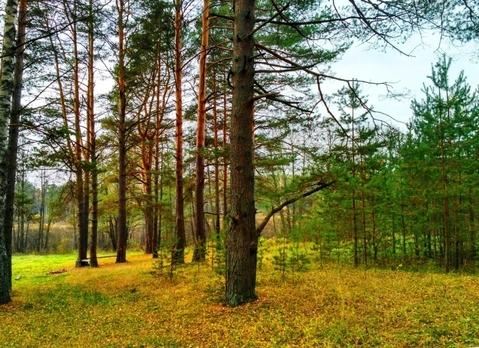 Судогодский р-он, Чамерево с, земля на продажу