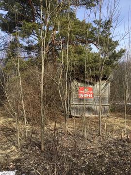 Продаётся ровный участок 6 соток в СНТ «Текстильщик-1», от дороги 500