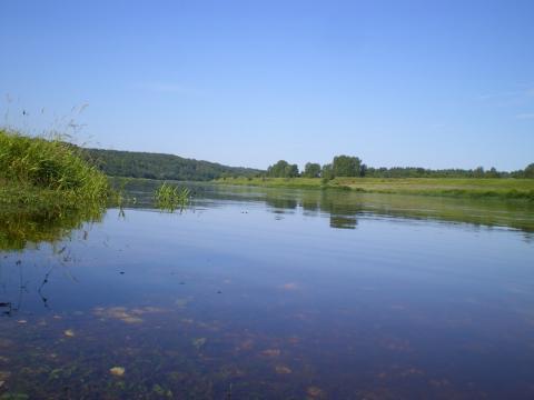 Участок на 1 береговой линии р. Волга, с лесным массивом.