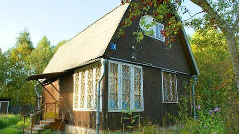 Дача 63 кв.м. на участке 12 соток в СНТ Марково на опушке леса.