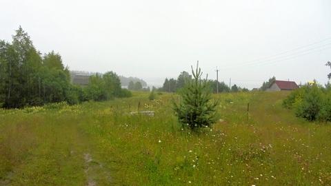 Новгородская область, Любытинский район, д.Домовичи, 10 сот. ЛПХ