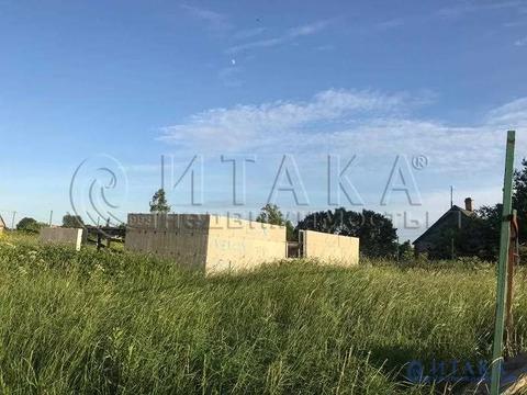 Продажа участка, Керстово, Кингисеппский район