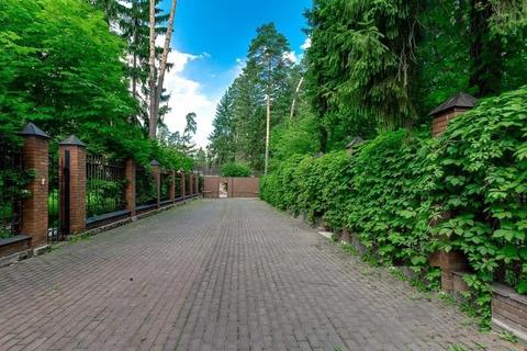 Сосновый участок для строительства резиденции в Горках-2 на Рублевке