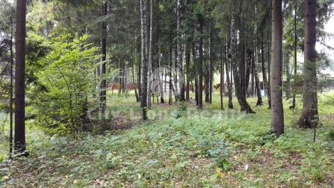 Уварово, Ирбис, Киевское (Калужское) шоссе, 22 км. от МКАД. Великолепн