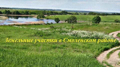 Участок в Рославльском направлении, рассрочка приветствуется!