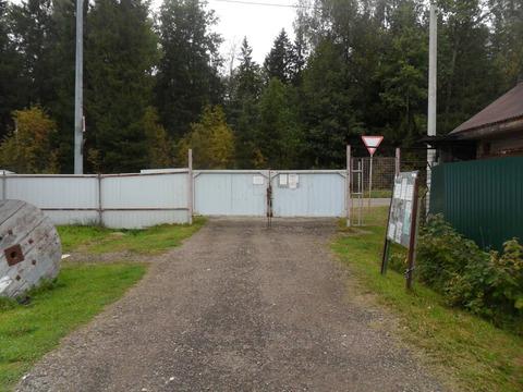 Земельный участок 9,2 сот с дачным домиком в СНТ «Ивушка» в р-не д. П