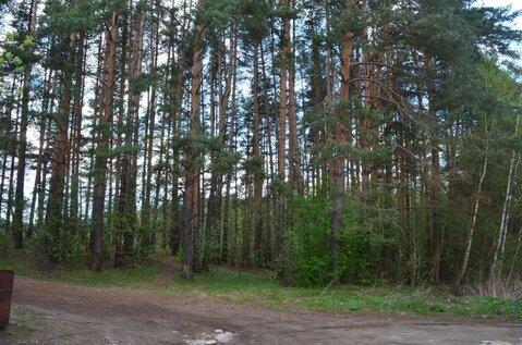 Участок с панорамным видом сквозь гущу соснового леса!