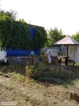 Продажа дома, Безлюдовка, Шебекинский район