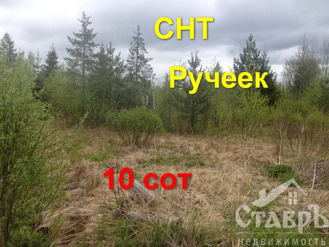 Тосненский район, п.Форносово, 10 сот. СНТ