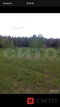 Продажа участка, Заречье (Николо-Раменское МО), Череповецкий район