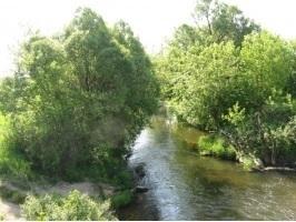 Недорогой участок для комфортного отдыха на природе