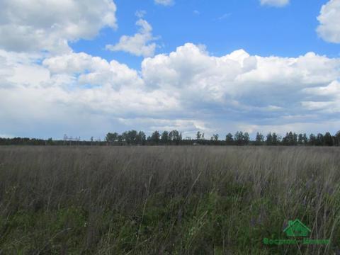 1,7 Га под ИЖС в д.Рязанки - 95 км Щёлковское шоссе