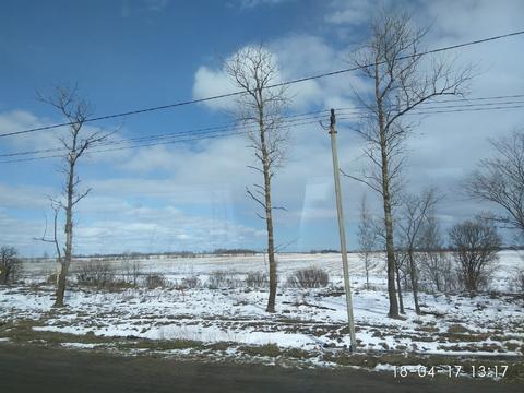 Продается земля пром назначения под склад, производство Тосненский р-н