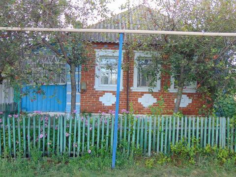 Дом в селе Демидовка