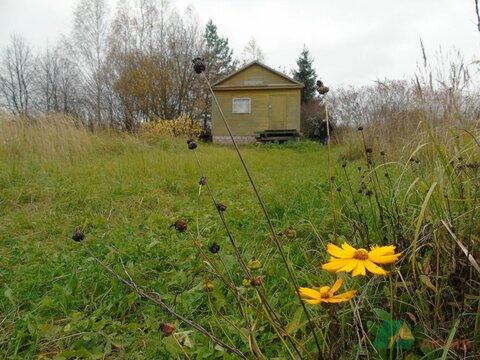 Продается земельный участок, с. Веськово с летним домиком.