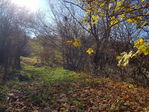 Земельный участок в Кисловодке