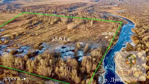 Участок на берегу реки Луга