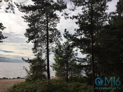 Участок на берегу Финского залива