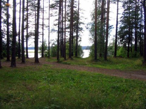 Первомайское+4 км, Цвелодубово